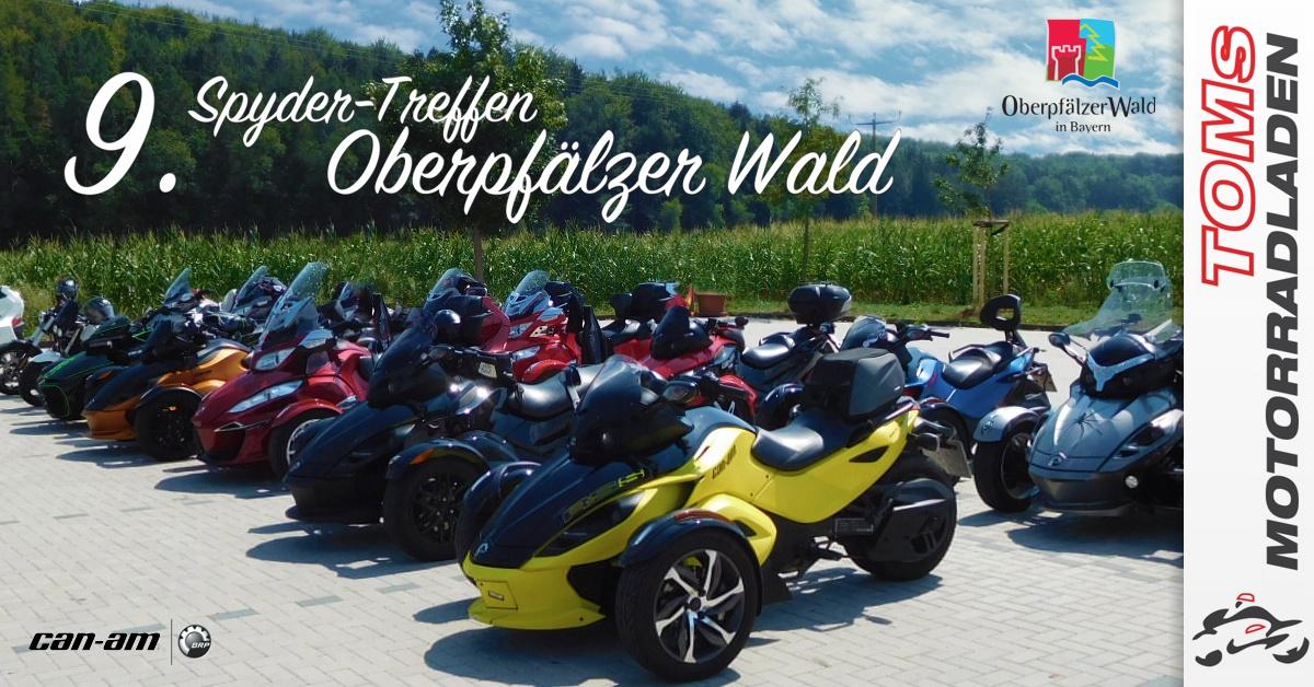 OberPfaelzerWaldBild